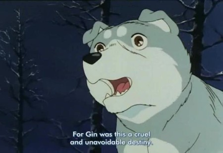 gin1n.jpg