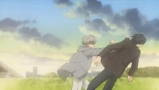 honey-clover11g.jpg